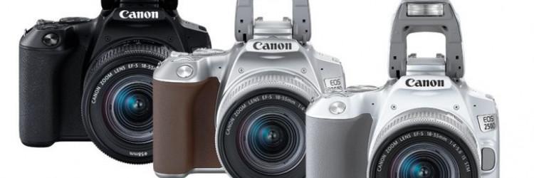 Za tradicionalne korisnike, tu su i provjereni i pouzdani DSLR fotoaparati EOS 5D Mark IV, EOS 6D Mark II, EOS 90D, EOS 250D i EOS 2000D