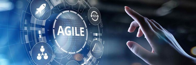 Program je namijenjen korporativnim timovima te posebno, pojedincima kojim imaju nekog liderskog iskustva te bi željeli primijeniti agilno liderstvo u svojim organizacijama
